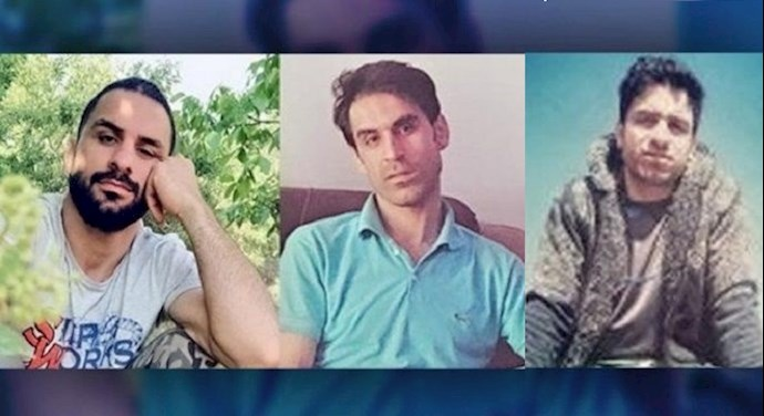 Navid, Vahid, and Habib Afkari Sangari were detained for their participation in nationwide protests in August 2018